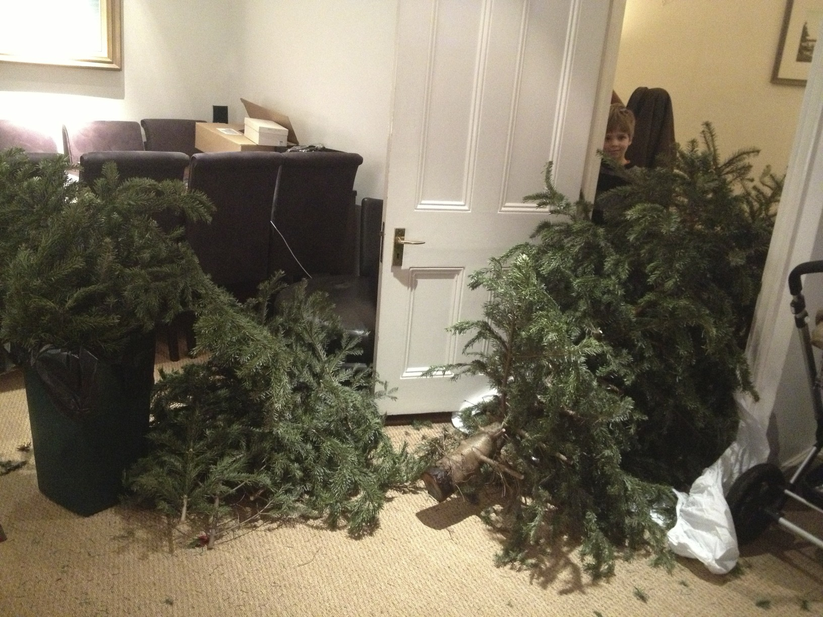 We said goodbye to the christmas tree. Which we had to dismember to fit back out the door.